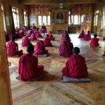 Moines boudhistes en train de prier