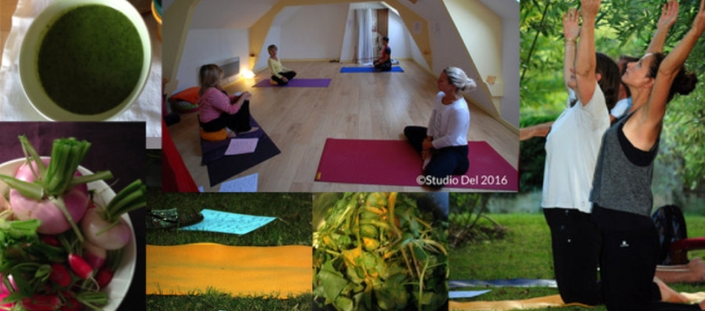 Stage yoga et cuisine ayurvédique : l'automne
